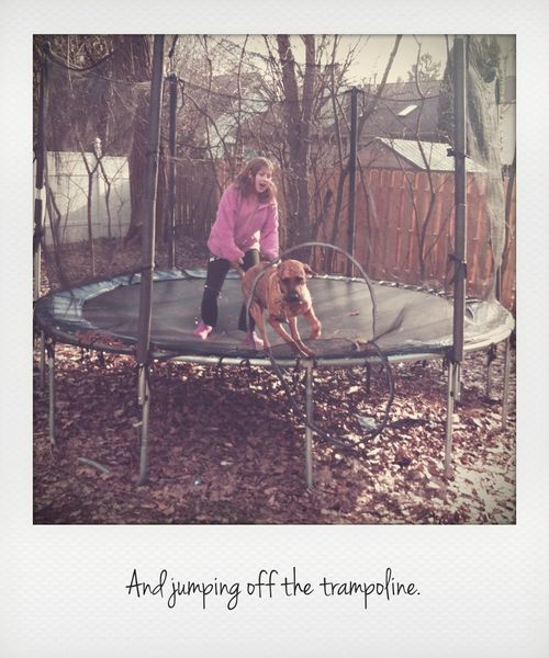 Off trampoline